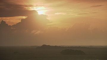 エバーグレーズ国立公園の画像 p1_13